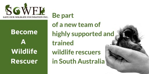 Wildlife Rescuer Course