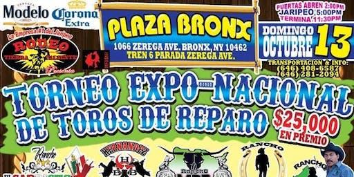 Torneo Expo Nacional de Toros de Reparo(Domingo/Bronx)