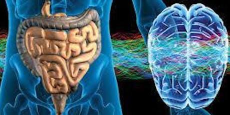7 Day Gut Brain Detox Workshop tickets