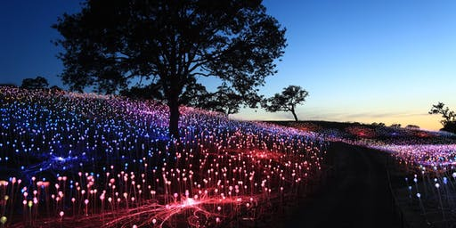 ARTISTS TALK: with the Pioneering Light Artist Bruce Munro