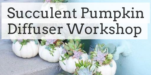 Succulent Pumpkin Diffuser Workshop