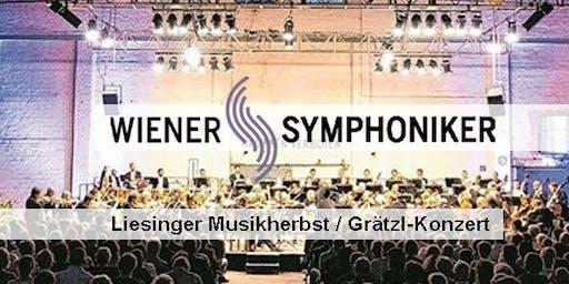 """Wiener Symphoniker - """"Grätzl-Konzert"""""""