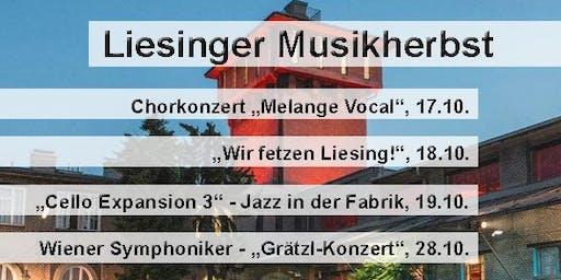 """Liesinger Musikherbst: """"Cello Expansion Konzert 3"""""""