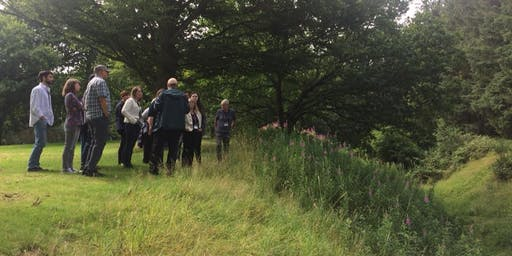 Guided Tour  around the Antonine Wall in Callendar Park