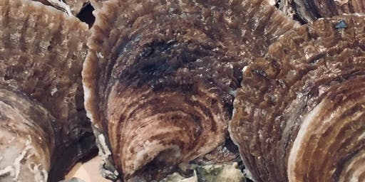 Oyster Tasting - The Native Oysters of Britian