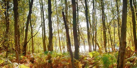 Mindfulness in Nature Retreat Day tickets