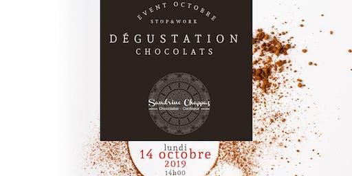 Dégustation de Chocolats