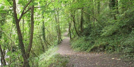 Inspired by Nature - Autumn Guided Walk and Land Art tickets