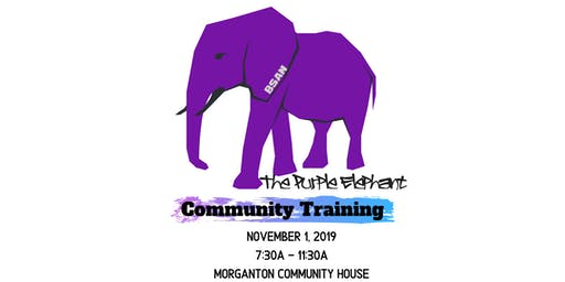 Purple Elephant Community Training