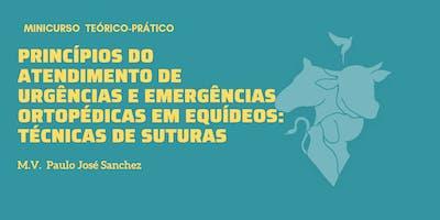 PRINCÍPIOS DO ATENDIMENTO: TÉCNICAS DE SUTURAS EM EQUINOS