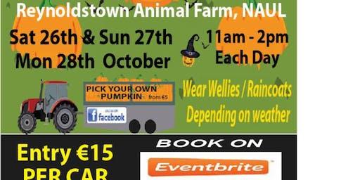 Pumpkin World @ Reynoldstown Animal Farm