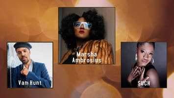 The Neo-Soul Concert Series