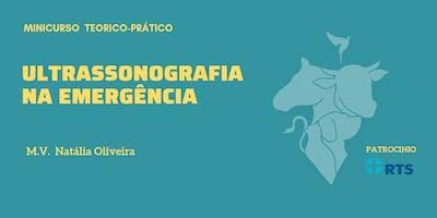 Ultrassonografia na Emergência - Em Pequenos Animais