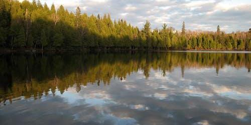 Benson Lake Hike
