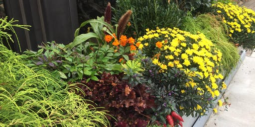 Fall Container Gardening - Peachtree City