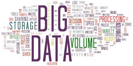 Conférence de Fabien Richert sur les Big Data biglietti