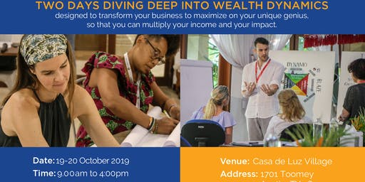Wealth Dynamics Workshop
