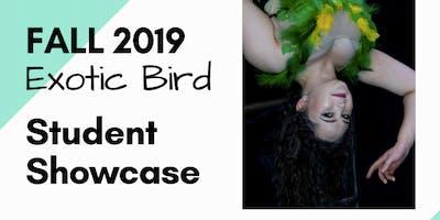 Exotic Bird Student Showcase @ The Circus Collective