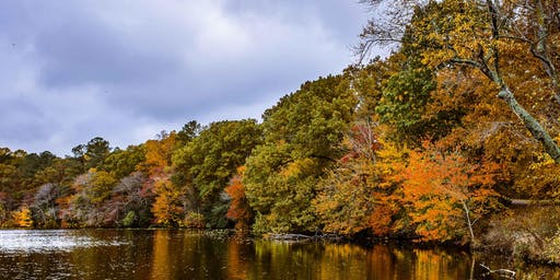 DelaVenture: Fall Foliage Hike at Killens Pond State Park