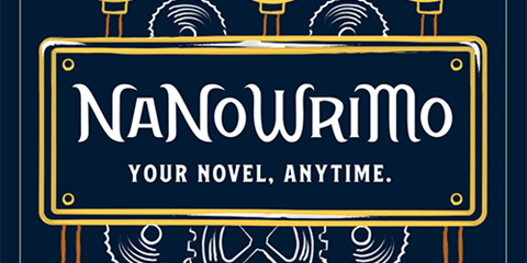 NaNoWriMo Rockdale Library Write In