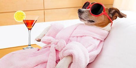 Pamper Your Pooch 1 day course tickets