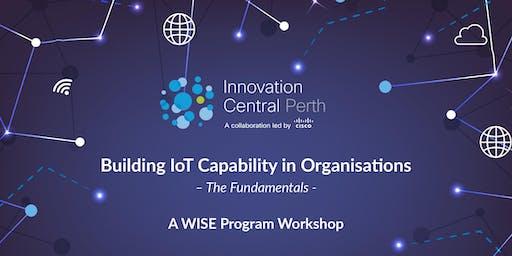 Building IoT Capability – The Fundamentals