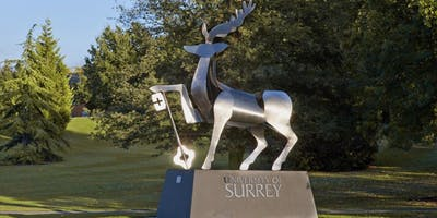 Celebrating Women in Engineering at the University of Surrey