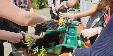 Edible Marsh – Our new gardening club! tickets