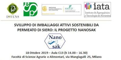 Meeting finale Progetto NANOSAK