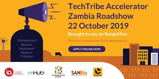 TechTribe Accelerator Zambia Roadshow