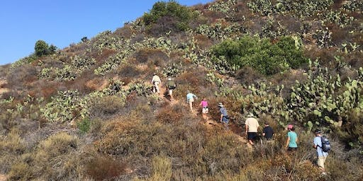 CANCELLED Fitness Hike at Dilley