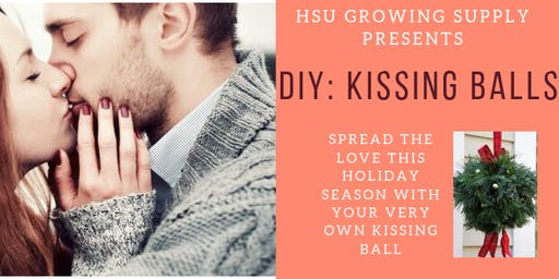 DIY: Holiday Kissing Balls