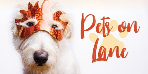 Pets On Lane Fall Event (Upper Arlington)