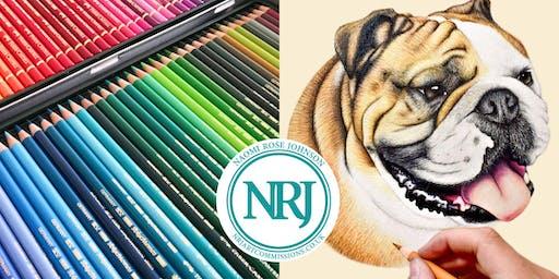 Draw an English Bulldog in Colour Pencils!