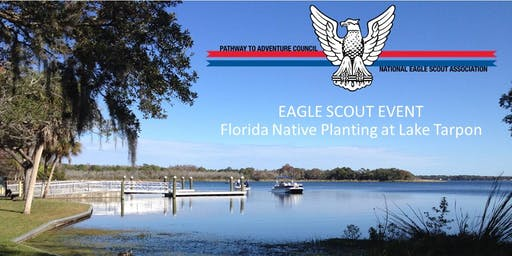 Lake Tarpon Planting- Eagle Scout Event: Troop 475