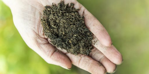 Soil Health and Your Wealth
