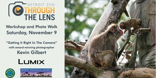 Detroit Zoo: Through the Lens; Getting it Right in the Camera