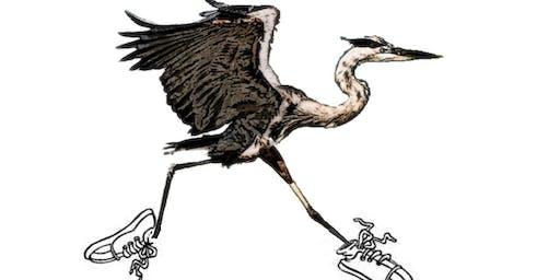 Heron Trot 5K