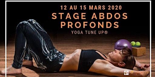 Stage Yoga Tune Up sur les abdominaux profonds (Core Immersion)