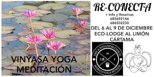 Re-Conecta con el Yoga 6-9 Diciembre 2019