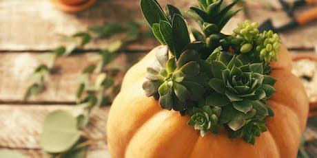 Wine & Succu-Pumpkin Workshop tickets