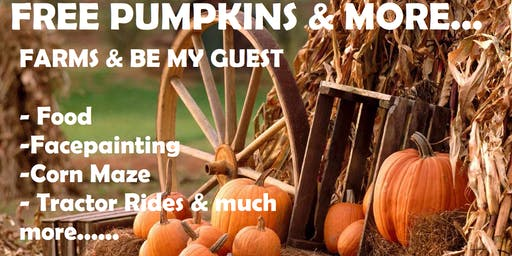 Pumpkin Patch Client Appreciation Event