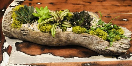 Make it & Take it: Faux Log Succulent Planter
