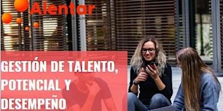 Gestión del Talento, Potencial y Desempeño entradas
