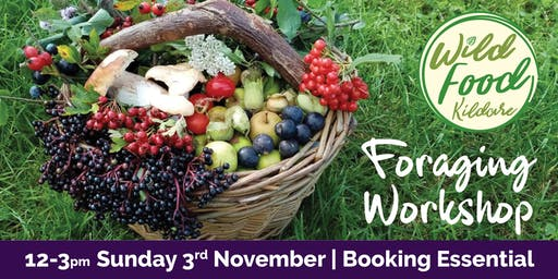 Foraging workshop with Wild Food Kildare