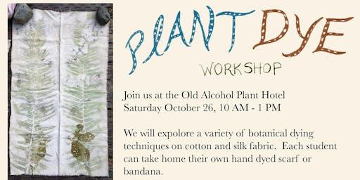Plant Dye Workshop