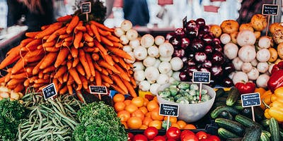 Starting From Scratch: Exploring Different Food Business Models