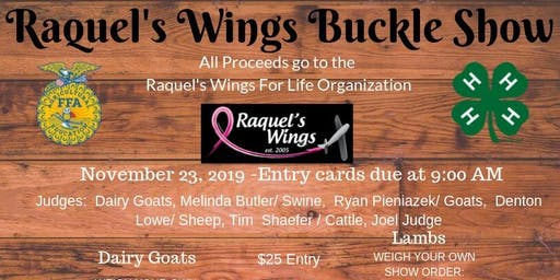Raquel's Wings Buckle Show