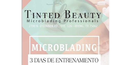 Curso de microblading y sombreado de cejas