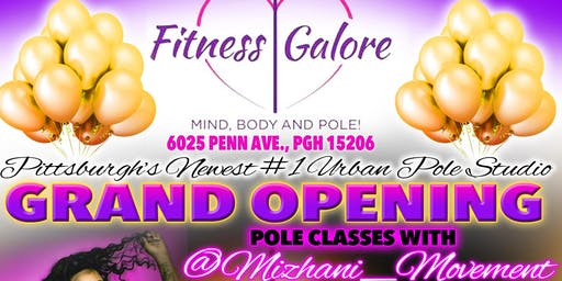Fitness Galore pole with Mizhani